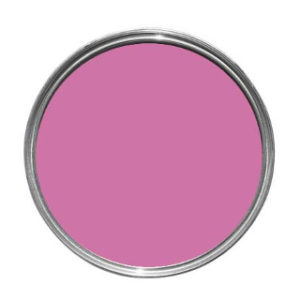 TESTER PASSION PINK JOHNSTONE'S PAINT