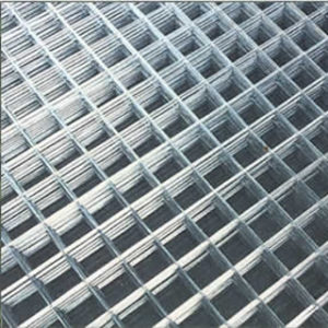 "3' x 2' x 1/4"" HANDYMESH WIRE NETTING"